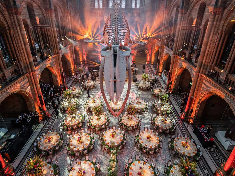 National History Museum Unique Corporate Awards Ceremony